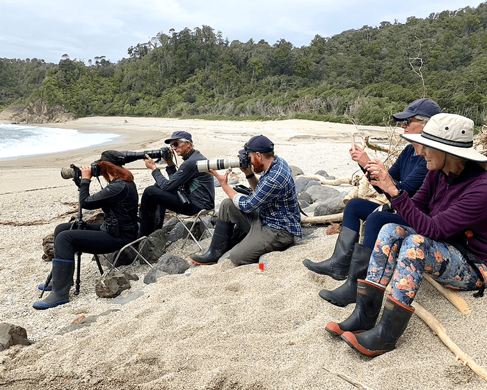 People sitting on sandy beach with cameras