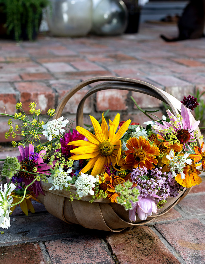 A basket filled with colourful flowers