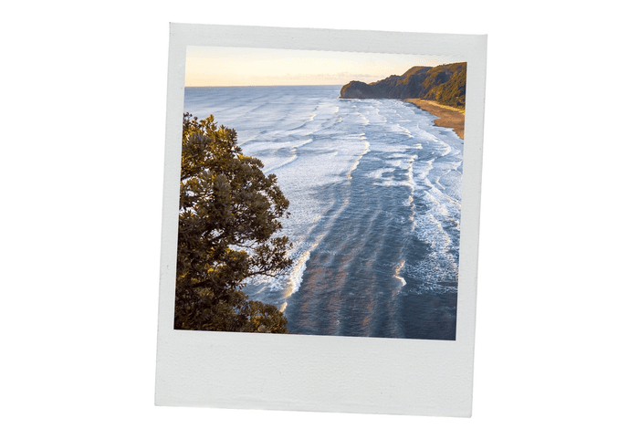 A polariod of Piha at sunset taken from a high angle