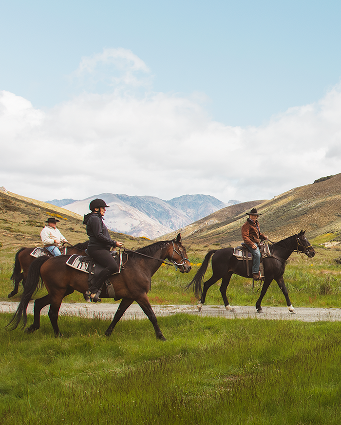 Riders riding horses in the hills of Hurunui
