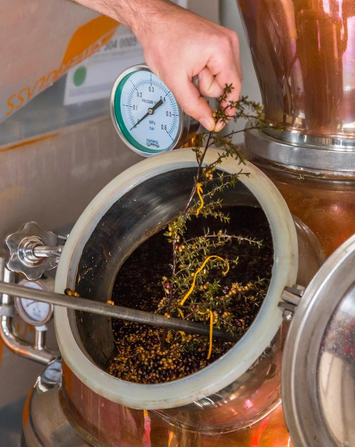 Flora being distilled during wine making