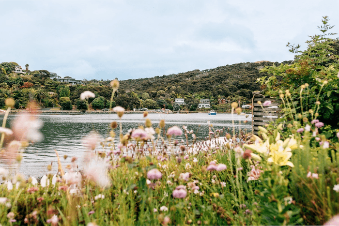 Flowers in the foreground with bay in the background