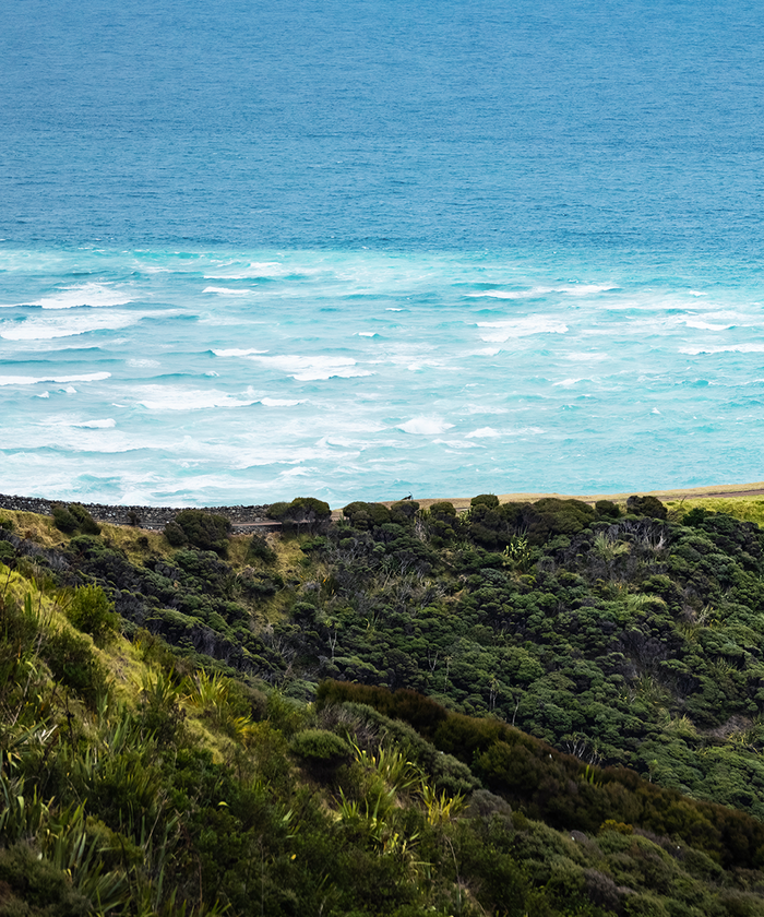 The view from Cape Reinga