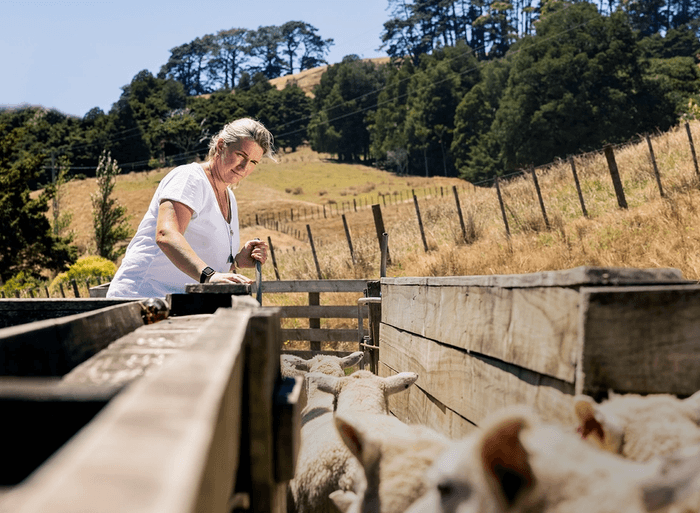 Nicky Berger standing by sheep pen on farm