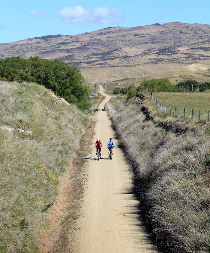 Two cyclists peddling up path in Central Otago