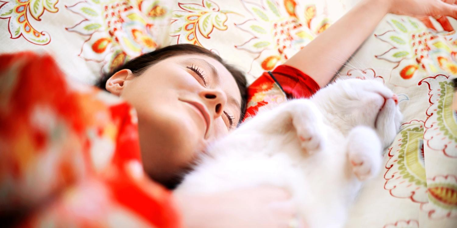Woman sleeping on bed with white cat