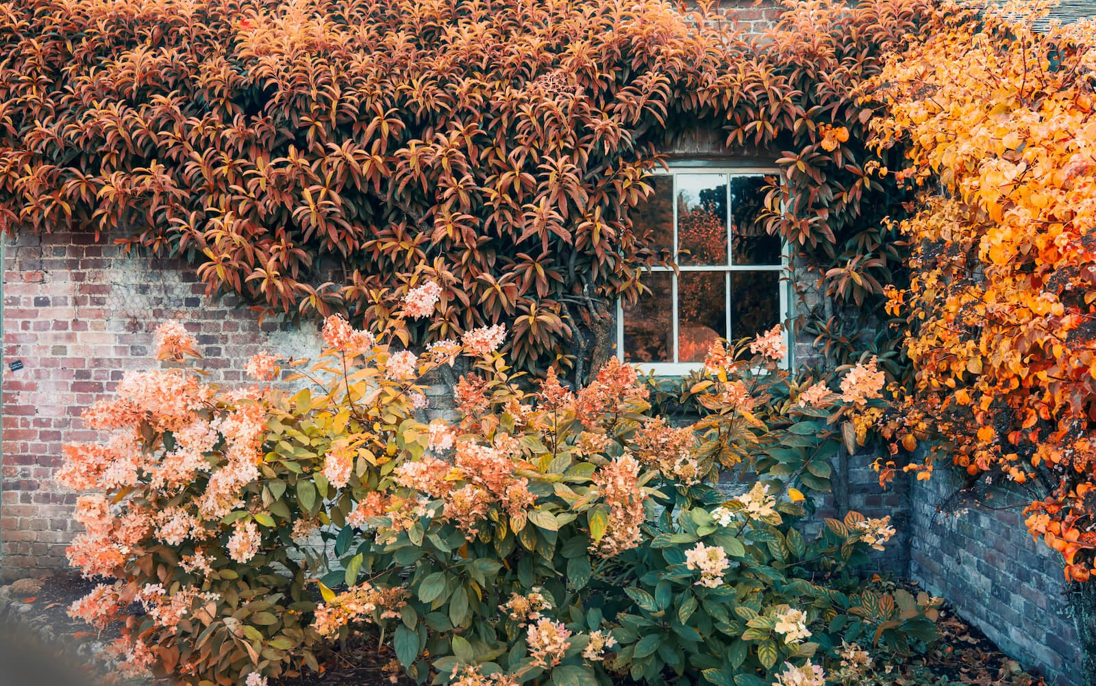 5 Tried-and-Tested Tips for Selling Your Home in Autumn