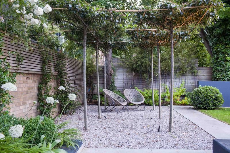 Top Terrace Garden Ideas for a Stylish, Private Plot of Paradise