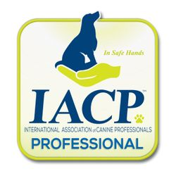 Badge for Members of the International Association of Canine Professionals