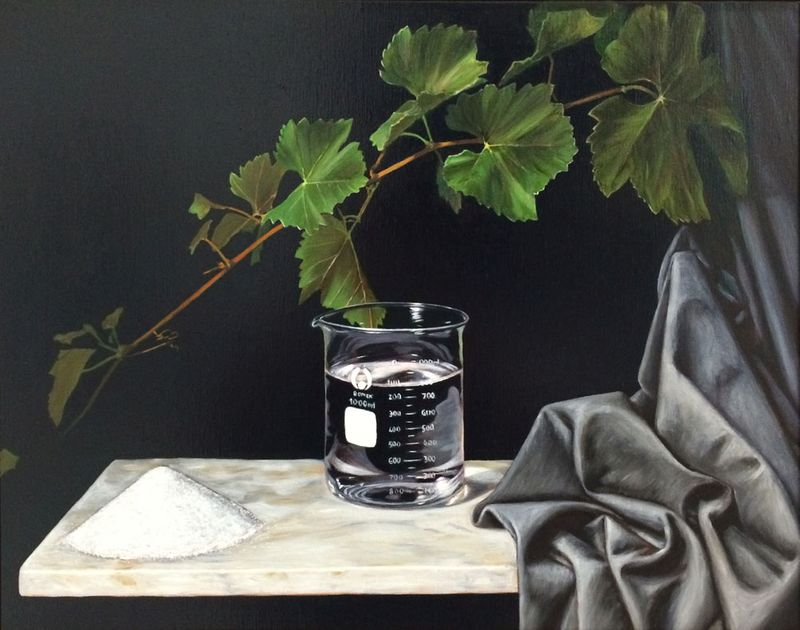 Still Life with Beaker Solvent and Solute
