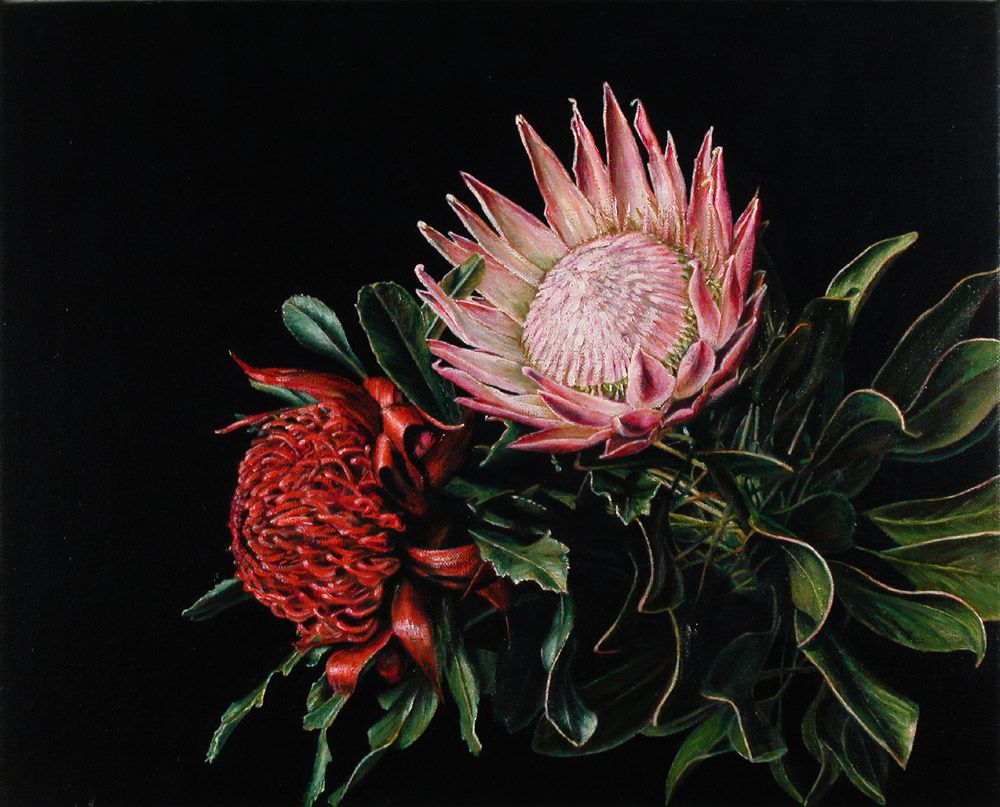 Still Life with Protea and Waratah
