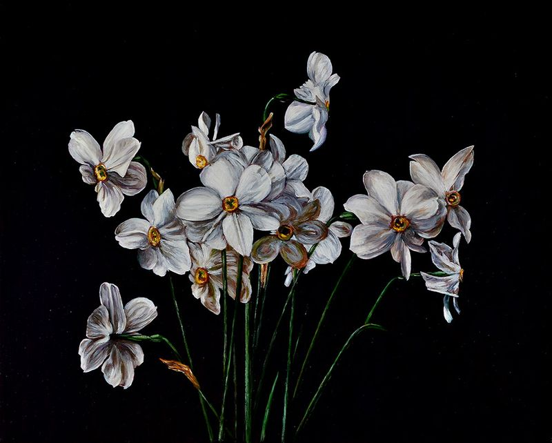 Still Life with Narcissus I