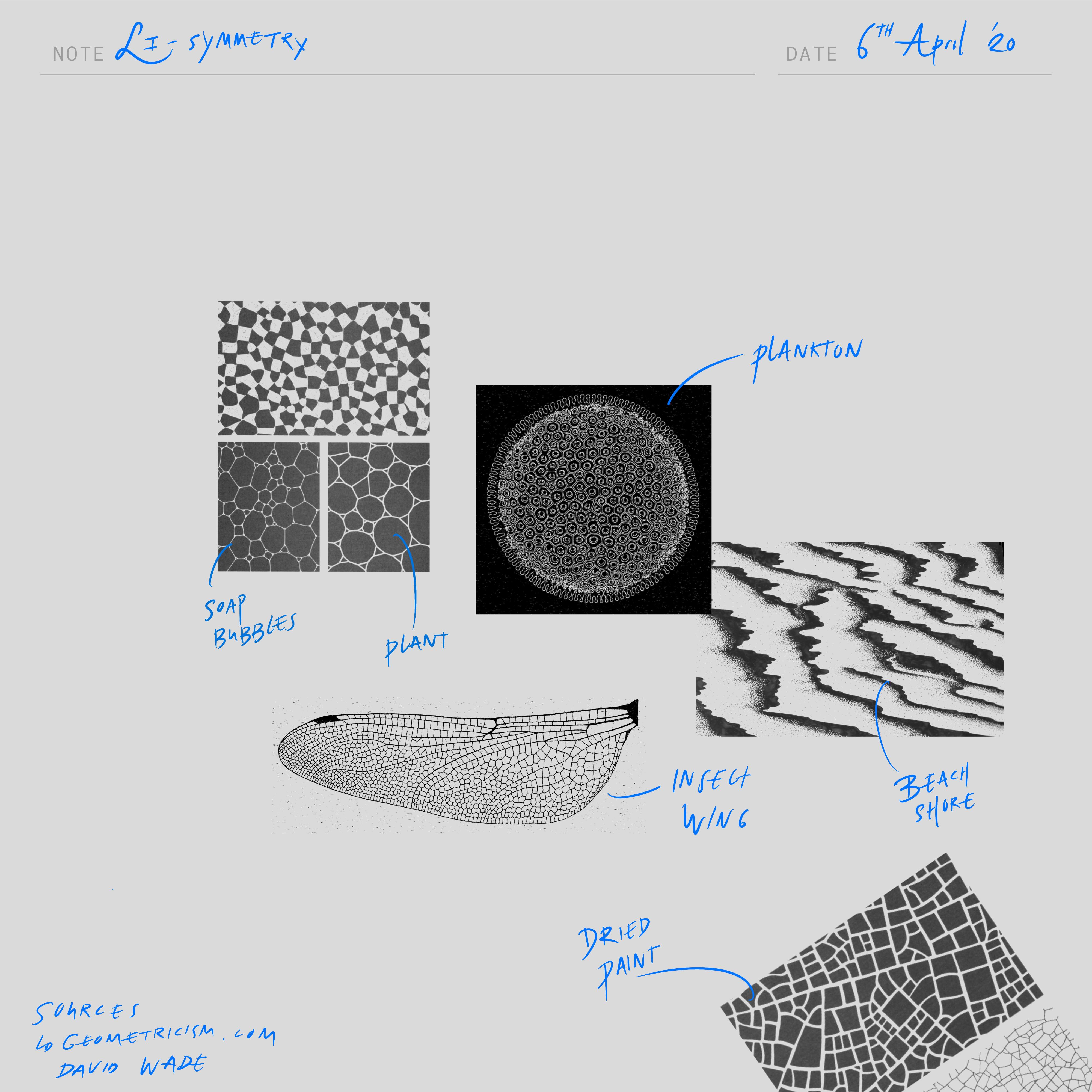 Li symmetry textures