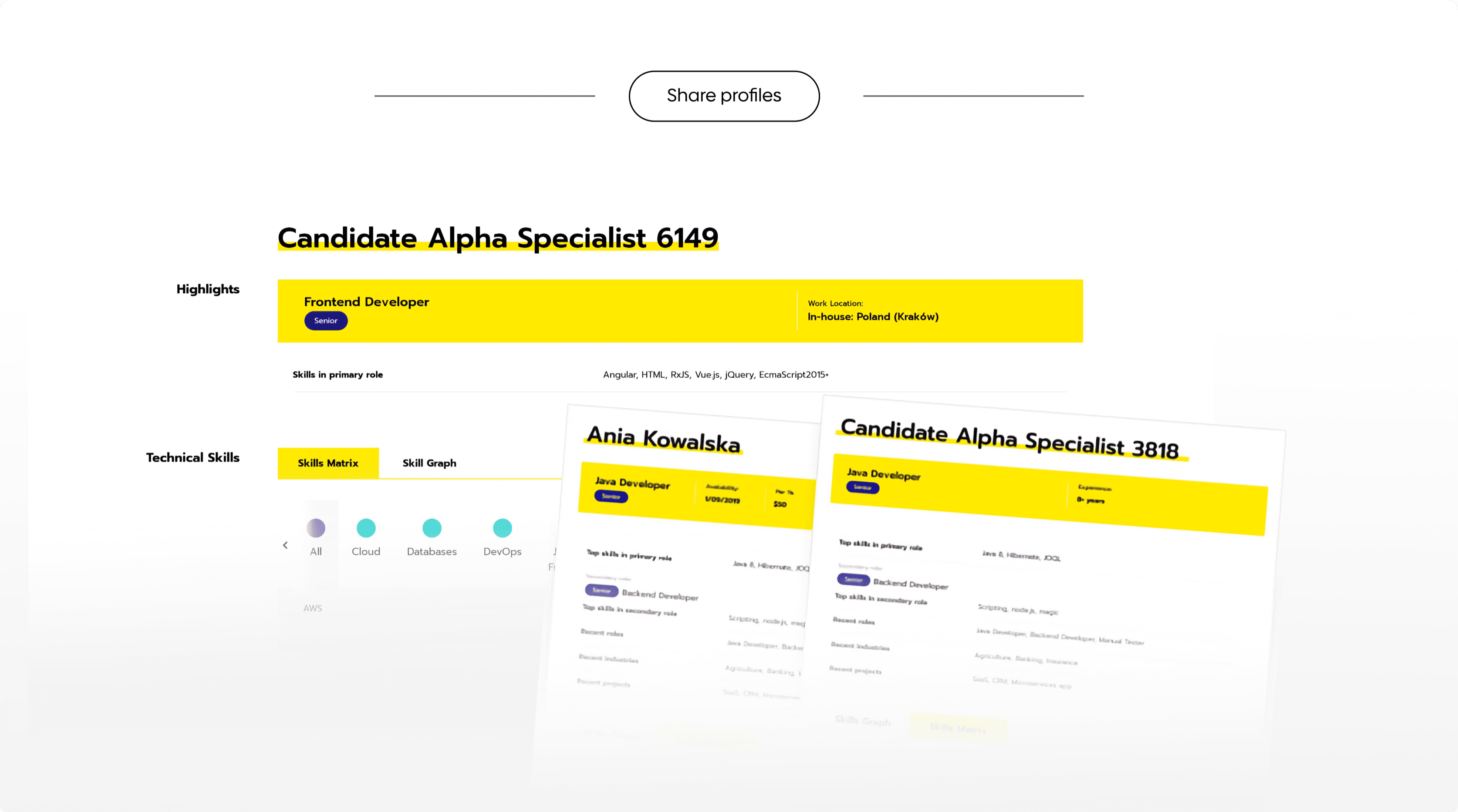 Sample screen from Talent Searching PLatform