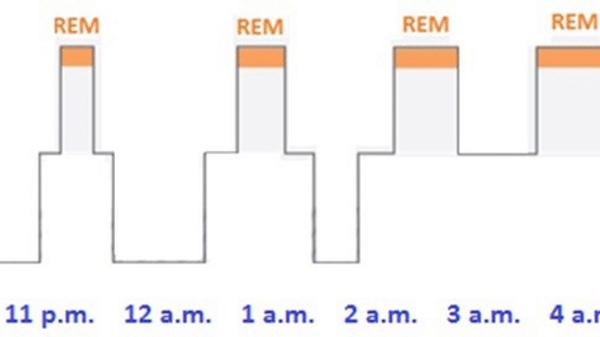stage of sleep insomnia