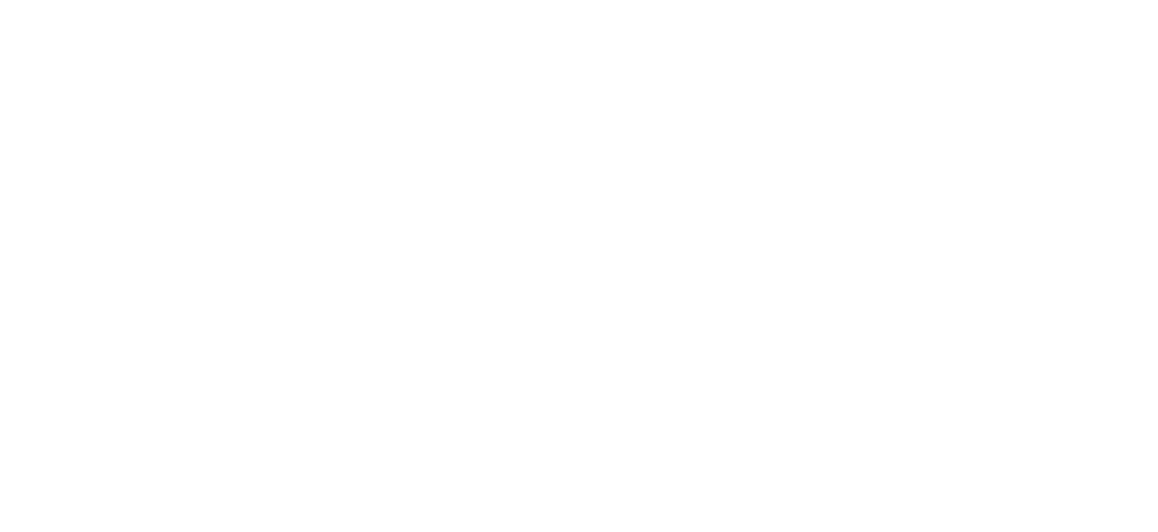 Orca Security