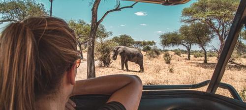 ragazza in safari in africa