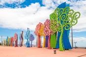 managua alberi colorati