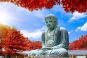 statua di buddha gigante a kamakura in autunno
