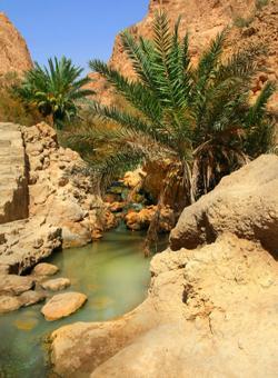 oasi di montagna a tozeur in tunisia
