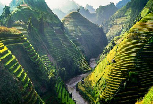 Green Tour in Birmania cover