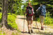 trekking nei boschi della sila
