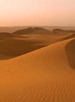 Dune nel deserto al tramonto in Oman
