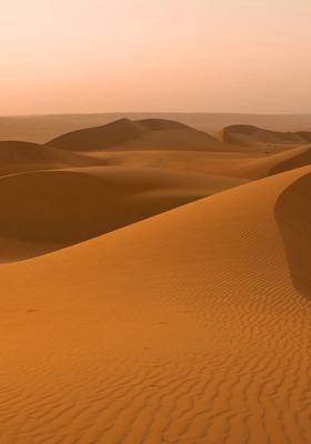 Dune del deserto al tramonto