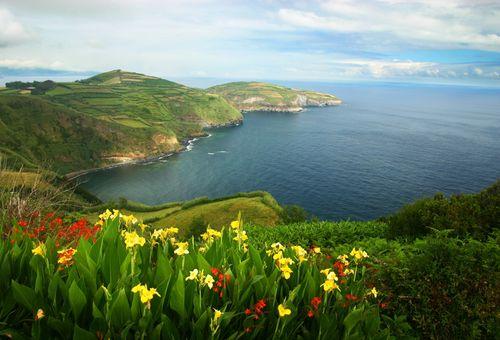 Wild Portogallo: Avventura nelle Isole Azzorre cover