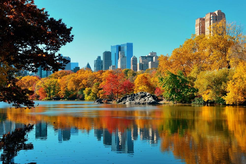 new york in autunno