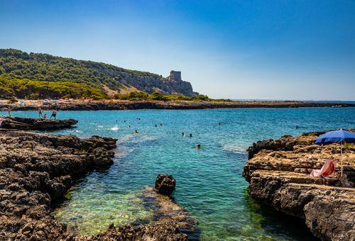 Immersione in Puglia con il WWF cover