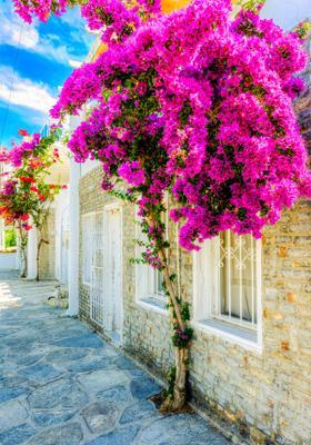 case colorate di bodrum