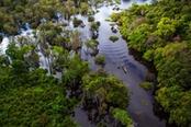 foresta amazzonica