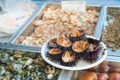 ricci di mare al mercato di catania