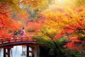 donna giapponese su un ponte rosso in autunno