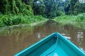 Imbarcazione nel Parco del Tortuguero