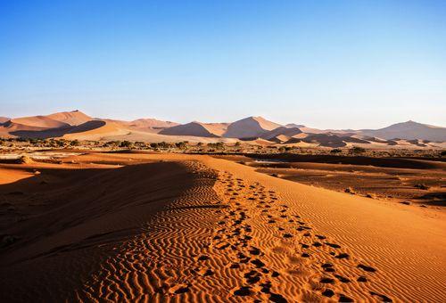 Camping in Namibia: Habitat Naturale cover