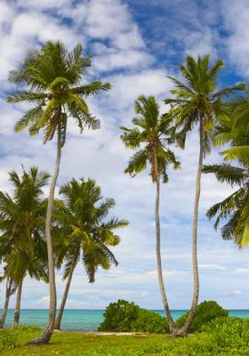 spiaggia gan island maldive