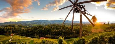 vigneti in slovenia con mulino in legno
