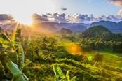 Paesaggio tropicale di Cuba