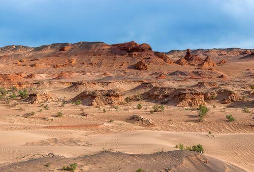 L'inesplorato deserto del Gobi Orientale cover