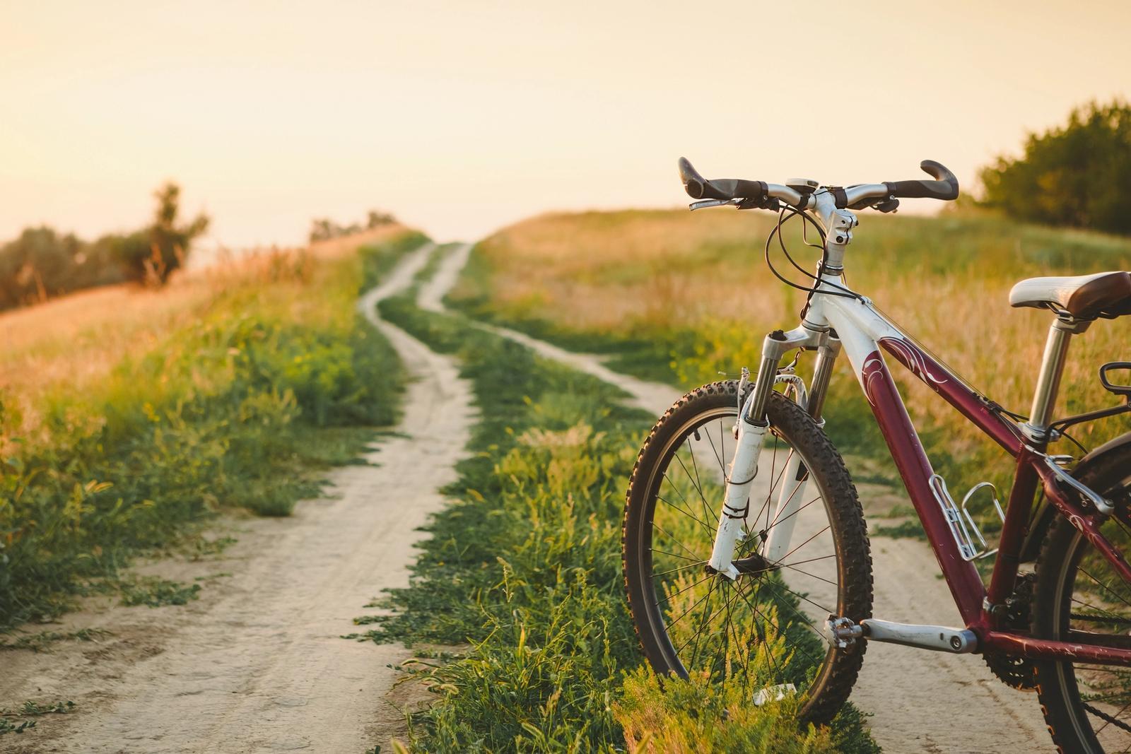 viaggi organizzati in bicicletta