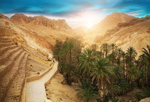 Tunisia: Oasi di Montagna cover