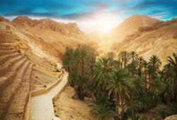oasi di montagna in tunisia