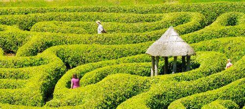 labirinto in italia