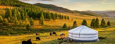 Viaggi in Mongolia