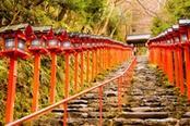 tempio di kyoto con lanterne rosse
