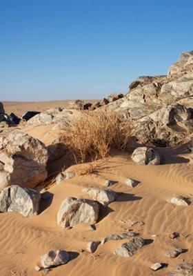 deserto di akjoujt