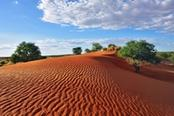 miglior tour italiano della namibia
