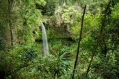 cascata nel parco amber mountain in madagascar